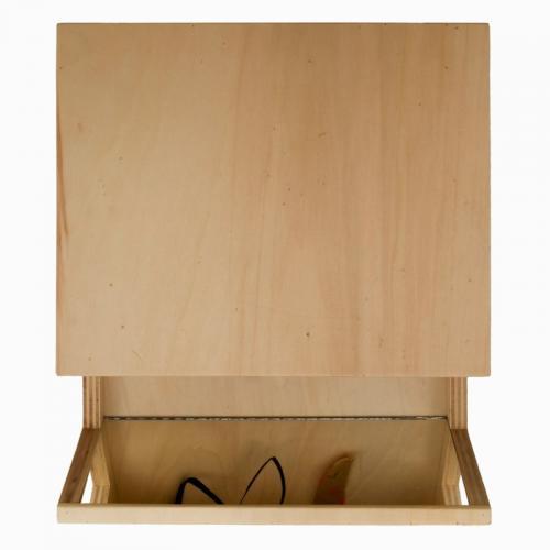 Reverbero I, 2007, madeira de choupo, espelho, óleo s/papel, 36 x 31 x 10 cm
