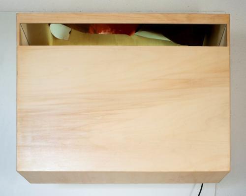 Reverbero X, 2009, madeira de choupo, espelho, lâmpada fluorescente e óleo s/papel, 87 x 106 x 51 cm