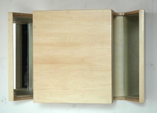Revérbero XVI, 2010, Choupo, espelho e óleo s/ papel, 36 x 53 x 18 cm