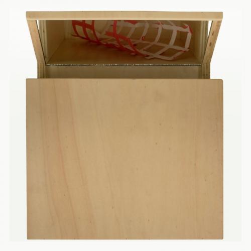 Reverbero II, 2007, madeira de choupo, espelho, óleo s/papel, 36 x 31 x 10 cm