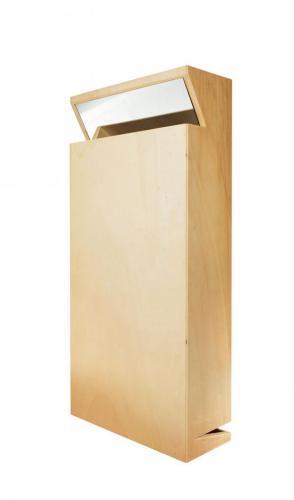 Reverbero IV, 2008, madeira de choupo, espelho, polyester, spray  e óleo s/papel, 82 x 40 x 16 cm