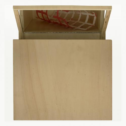 Revérbero 2, 2007, madeira, espelho e óleo sobre papel, 36 x 3 x 0 cm
